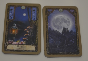 Carta de noche y carta de luna